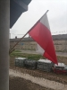 obchody święta flagi-10