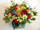 b_150_100_16777215_00_images_stories_202122_kwiaty.jpg